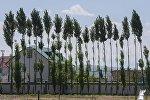 Бишкек шаарындагы жер там. Архив
