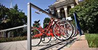 Станции проката велосипедов в районе Филармонии. Архивное фото