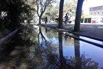 Тротуар по улице Льва Толстого затопило водой, вышедшей из арыков