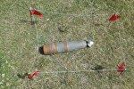 Ош облусундагы Алай районунун Көк-Дөбө айылында табылган снаряд