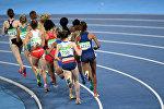Участницы олимпиады 2016 во время забега на длинную дистанцию