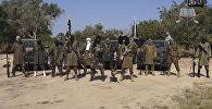 Боко Харам террордук уюму. Архивдик сүрөт