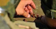 Военнослужащий получает патроны для стрельбы. Архивное фото