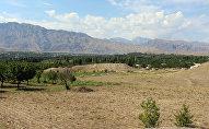 Приграничное село в Баткенской области Кыргызстана. Архивное фото