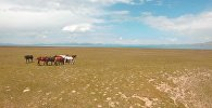 Уникальный Кыргызстан: озеро Сон-Куль