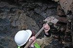 Мужчина во время раскопок. Архивное фото