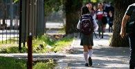 Школьница столичной школы идет по улице. Архивное фото