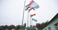 Архивное фото флагов стран ОДКБ на совместных учениях