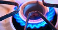Газ плитанын иштеген учурунда