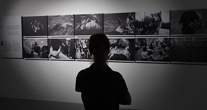 Посетитель на выставке победителей и призеров Международного конкурса фотожурналистики имени Андрея Стенина в Москве.