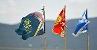 Флаги развеваются на ветру. Архивное фото