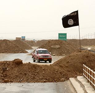 Ислам мамлекети террористик уюмунун согушкерлери. Архивдик сүрөт