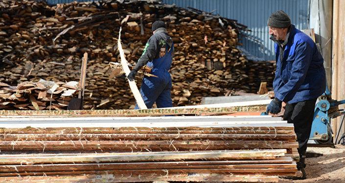 Цех первичной обработки древесины. Архивное фото