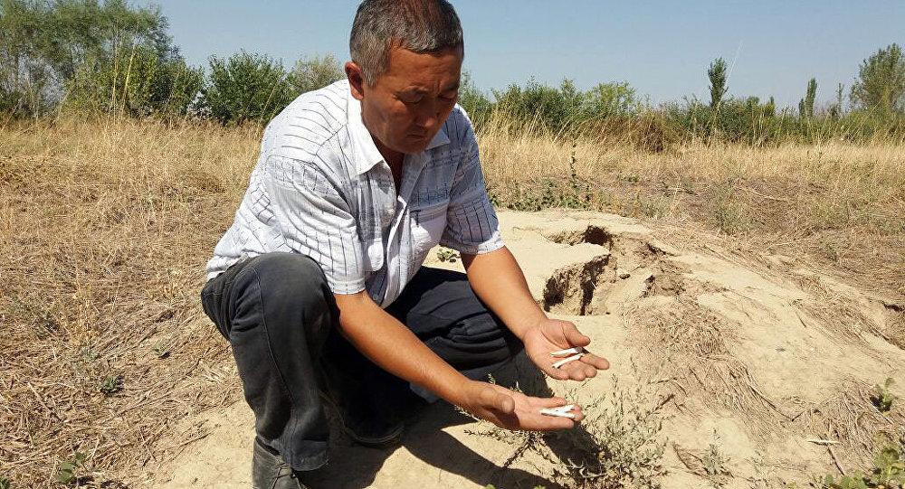 Архивное фото села Мамажан Кара-Суйского района, где мужчина показывает могилу, раскопанную шакалами