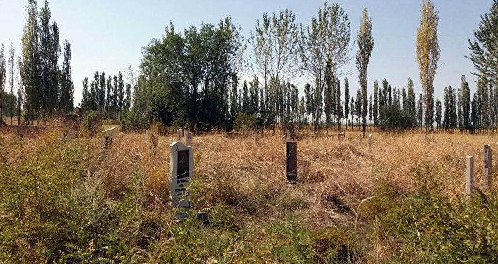 В селе Мамаджан Кара-Сууйского района Ошской области шакалы разрывают захоронения и поедают останки усопших.