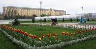 Здание парламента Узбекистана в Ташкенте. Архивное фото