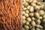 Морковь и картофель. Архивное фото