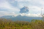 Индонезиянын бийлиги Баруджари жанар тоосу атылуусу