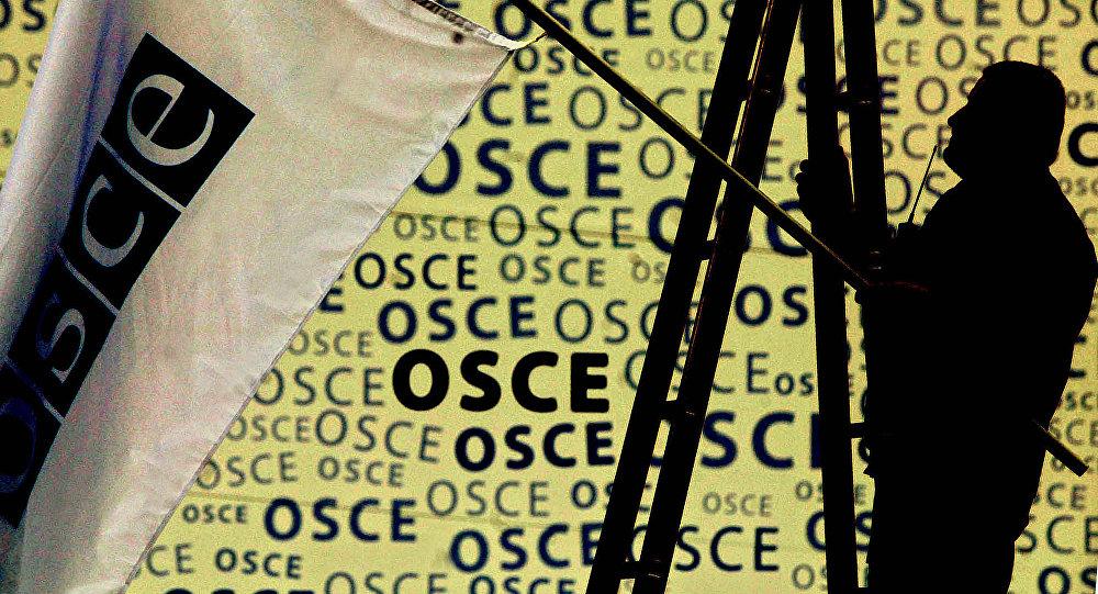 Работник развешивает флаг ОБСЕ. Архивное фото