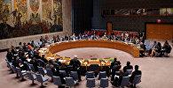 Заседание Совета Безопасности Организации Объединенных Наций в Нью-Йорке. Архивное фото