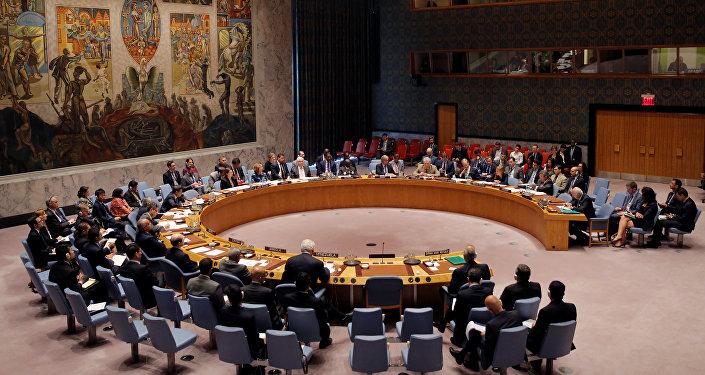 Совещание Совета Безопасности Организации Объединенных Наций в Нью-Йорке, США