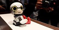 Презентация робота-ребенка Kirobo Mini