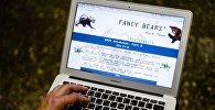 Архивное фото мужчины, который просматривает сайт хакерской группы Fancy Bear