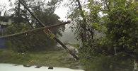 Затопленные улицы и поваленные деревья - последствия урагана Мэтью на Гаити