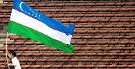 Мужчина несет национальный флаг Узбекистана. Архивное фото
