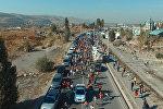 Бишкекте миңдеген кишилер беш чакырымдык аралыкка чуркашты