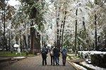Снег придавил своей тяжестью деревья, еще не скинувшие листву…