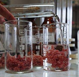 Анализ мясных продукций в лаборатории. Архивное фото