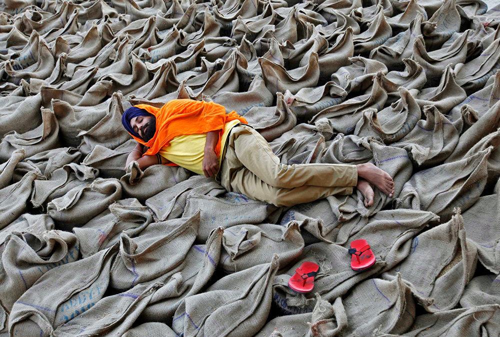 Оптовый рынок в Чандигархе, Индия