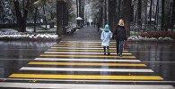 Женщина с ребенком переходит дорогу на бульваре Дзержинского. Архивное фото