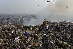 Мужчина на мусорной свалке в Нью-Дели, Индия