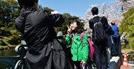 Токио жарандары. Архивдик сүрөт