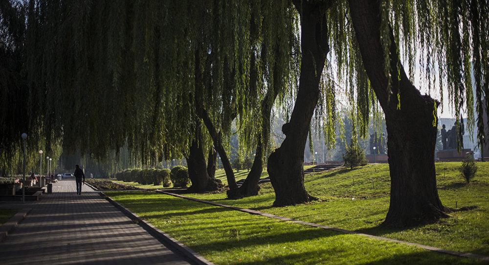 Город Бишкек. Архивное фото
