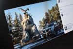 Снимок с социальной сети Facebook пользователя Влад Ушаков. Автомобиль марки Vokswagen Amarok у памятника путешественнику Пржевальского