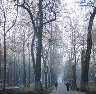Бишкек шаарындагы Эркиндик проспекти. Архивдик сүрөт