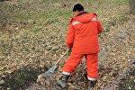 Сотрудник муниципального предприятия Тазалык во время уборки от листьев. Архивное фото