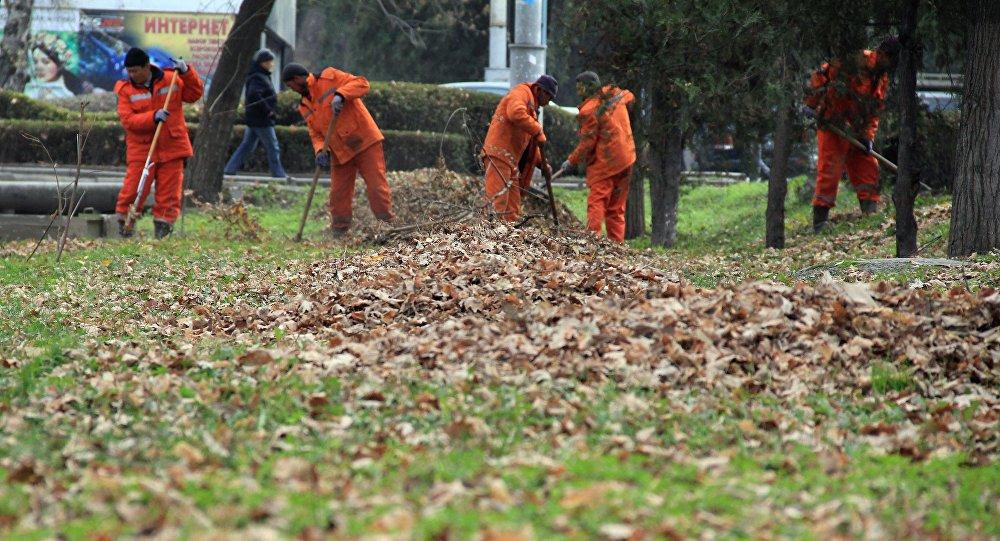 Сотрудники муниципального предприятия Тазалык во время уборки от листьев на бульваре Эркиндик. Архивное фото