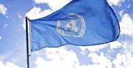 Флаг Организаций Объединённых Наций. Архивное фото
