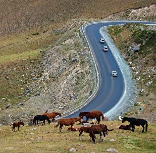 Бишкек - Ош унаа жолу. Архив