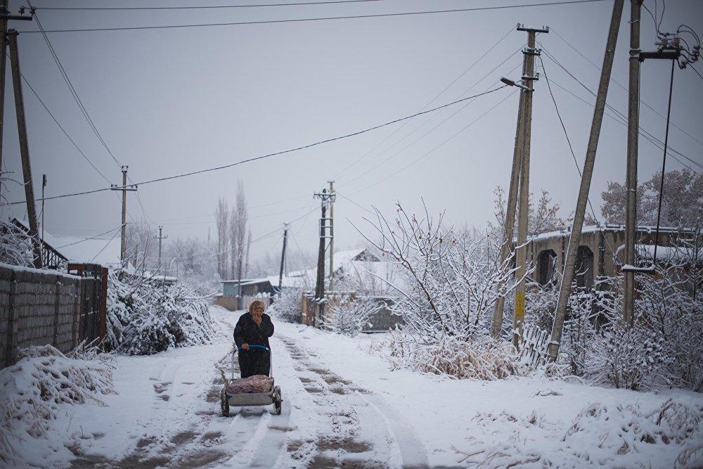 Бишкек аппак карга бөлөндү