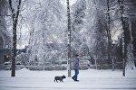 Прохожий с собачкой на одной из улиц Бишкека. Архивное фото