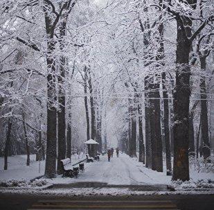 Эркиндик бульвары. Архив