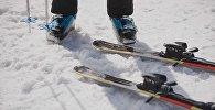Лыжники. Архивное фото