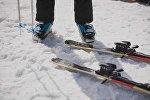 Лыжа тебүү. Архивдик сүрөт