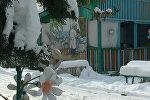 В Токмокском доме ребенка температура ниже нормы, батареи холодные