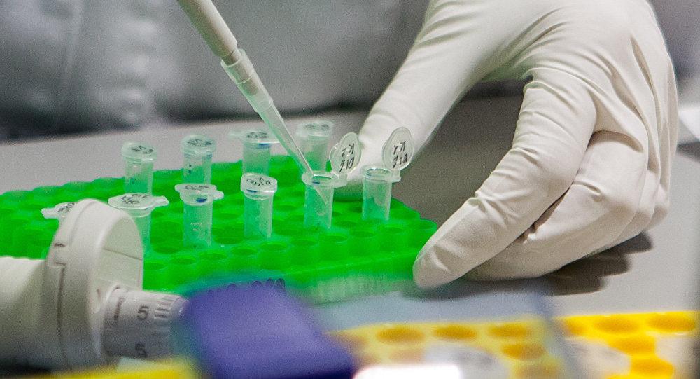 Ученые: религия может быть инфекцией, разносимой бактериями